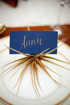 creative-place-card-ideas-air-plant