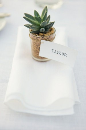 creative-place-card-ideas-potted-succulent